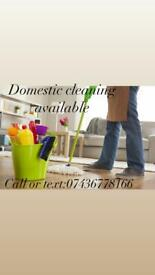 Domestic cleaning/End tenancy cleanig