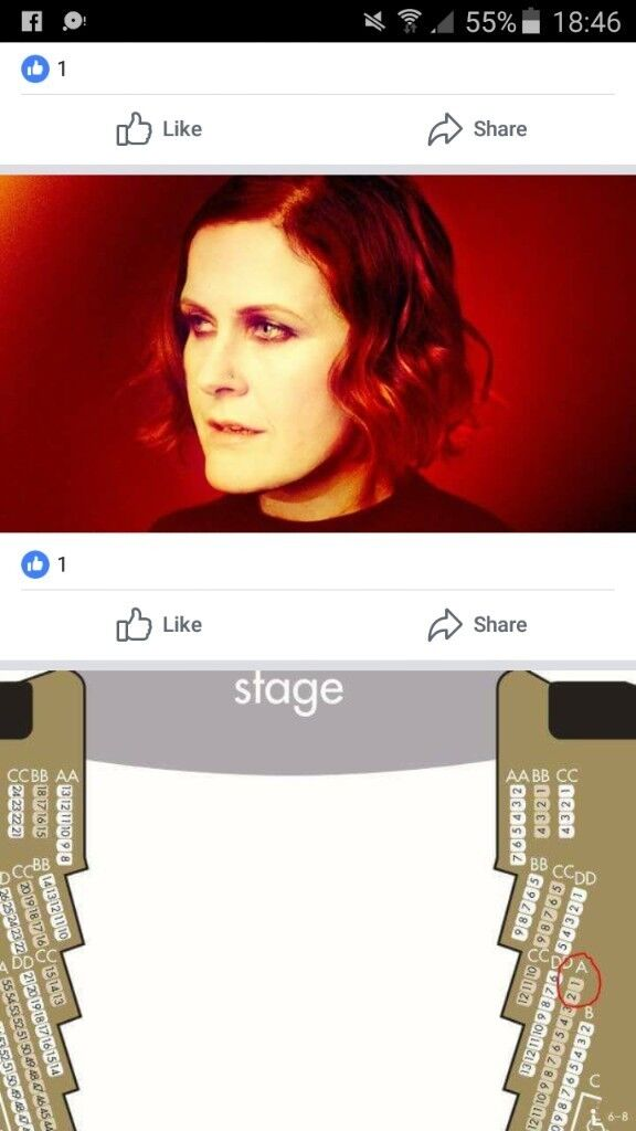 Alison Moyet sell out gig