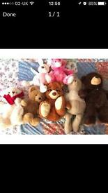 Bundle teddies including Bruno Bear!