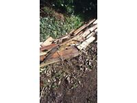 Quantity FIREWOOD FREE TO COLLECTOR LOT MORE THAN IN PIC