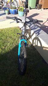 Muddyfox mountain bike - like new