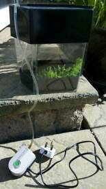 Fish Tank with Air Bubbles (6L)
