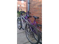 older style mountain bikes mans womans girls with 26 inch 24 inch wheels