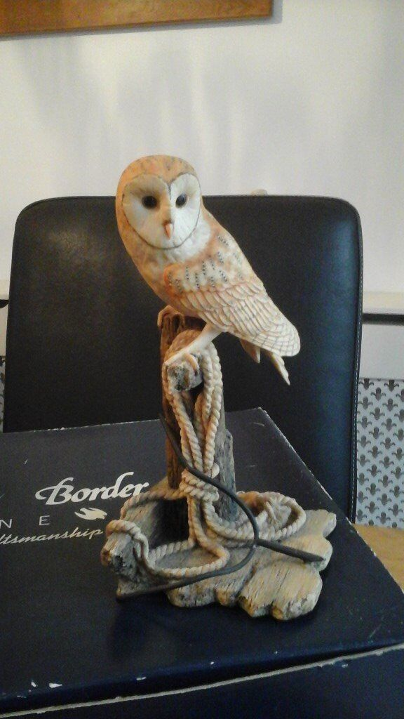 Barn Owl - Border Fine Arts | in Hedge End, Hampshire ...