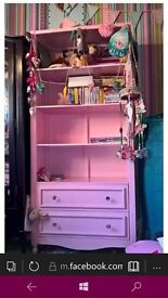 Pink Shelving unit