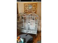 Bird Parrot Cage