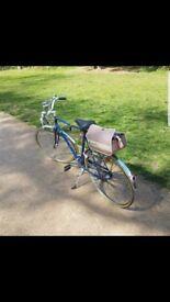 Vintage 1982 Dawes Road Bike