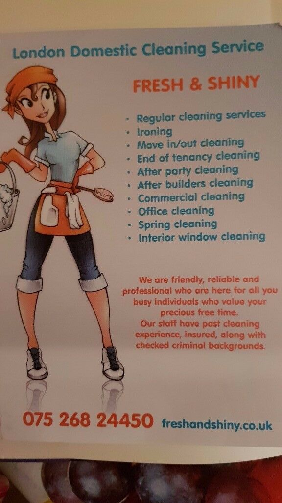 FRESH & SHINY (domestic Cleaning Service)