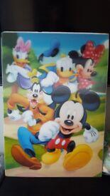 Disney flexilble picture