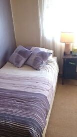 Room to Let/Flat Share