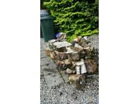 Firewood hard wood