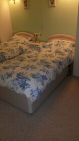 Single Electric Bed / Memory Foam Mattress IN VGC