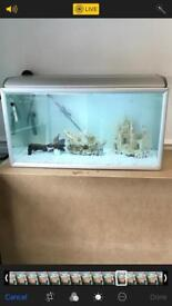 Fish tank 40x20x20