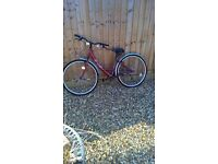 ladies new bicycle 20in frame in red with crome mud gruads £70.00 oo