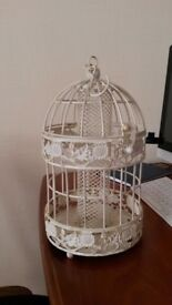 Clean Bird feeder
