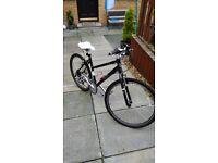 "Pendleton Brooke Hybrid Bike 18"" Frame"