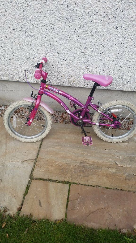 Girls bicycle great Xmas present for £20