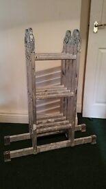 Profetional multi function 3 m. aluminium ladder