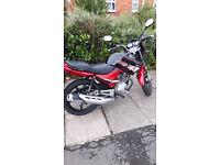 honley 125 motorbike
