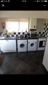 SINGLE ROLM TO RENT IN GRAYS