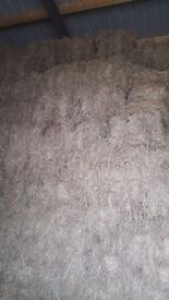 Good quality square bales of hay for sale no fertiliser used never seen rain good heavy bales