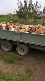Softwood Logs .