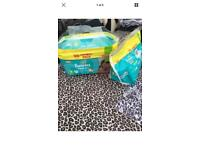125 Pampers size 3 nappies