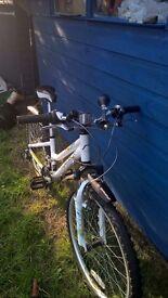 Ridgeback Destiny Girls Bike - Shed kept excellent condition
