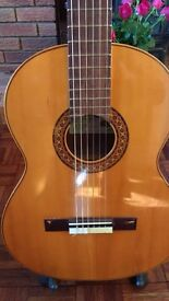 Vicente Sanchis handmade Spanish Guitar Model 34 (with option of Gator Case)