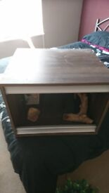 Small vivarium ideal for gecko or spiders
