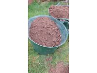 Soil - free to collect - bagged ready for collection from Saltash