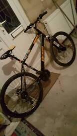 Boss bike for sale