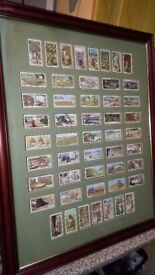 """Cigarette cards """"Products of the world"""" mounted in picture frame"""
