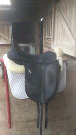 Isabelle werth dressage saddle. 17-5 inch black