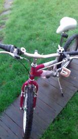 Bike for girls