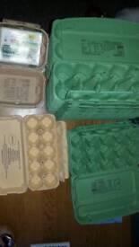 Free egg trays