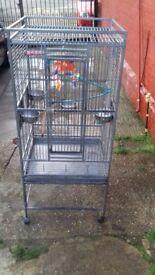Large Parrot Cockatiel Bird Cage