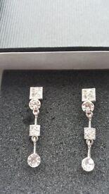 Danielle Albert Drop Earrings Silver/Crystal Fashion Earrings