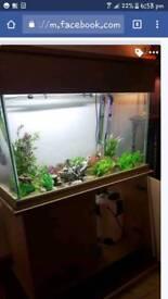 3ft fish tank heater external filter
