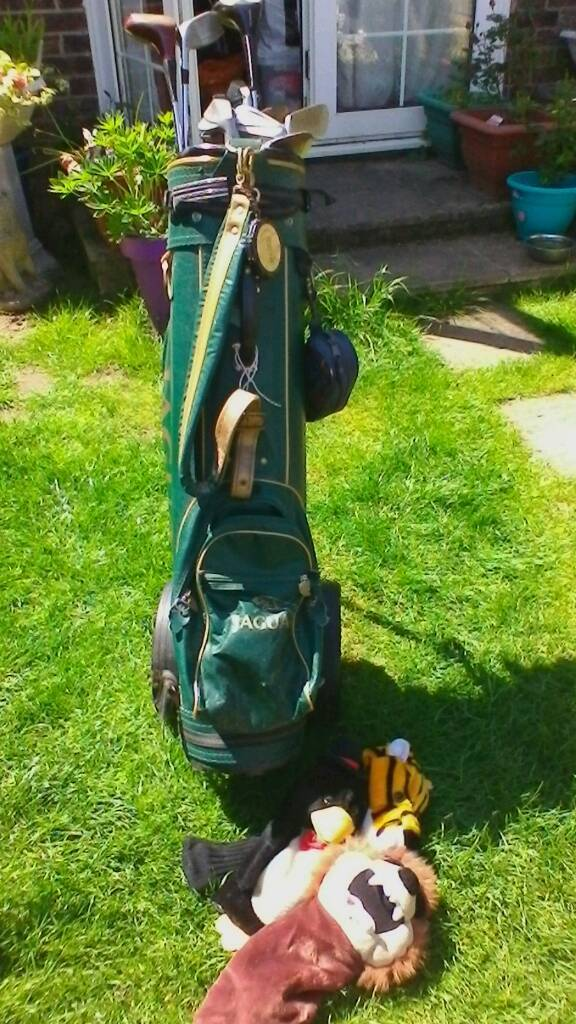 Golf clubin Thetford, NorfolkGumtree - Golf clubs with bag, some balls,and tees