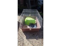 Guinea Pig / Rabbit / Small Animal Cage and Accessories for Sale