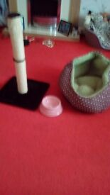 Brown and green kitten bed pink cat dish and a black and cream scratch post