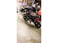 125cc stomp pitbike