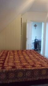 Beautiful Nice room to Rent in Catford