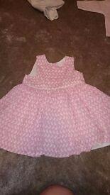 Next baby bunny dress