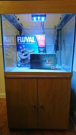 *2ft Cube Fish Tank and Cabinet. Equipment Included*