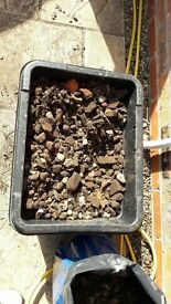 Rubble/stones free to collector