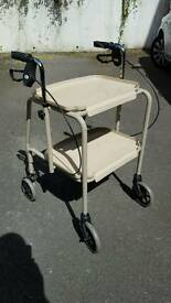 Walker Trolley Disability Mobility