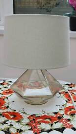 Frosted glass lamp with sparkly hade