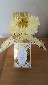 Beautiful hand made pop up cards